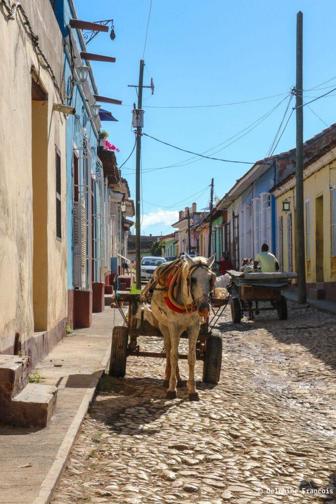 Charrue tirée par un cheval dans une rue pavée de Trinidad